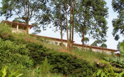 Colaboração com a Fundação COEM no seu projeto nos Camarões
