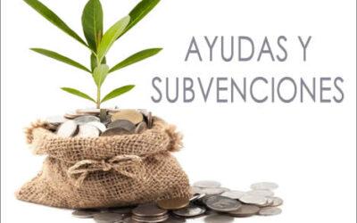 Subvención para el fomento de instalaciones de energía solar fotovoltaica en empresas y entidades sin ánimo de lucro 2020. Gran Canaria