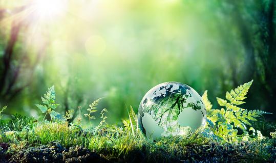 dia mundial del medioambiente suministros orduña