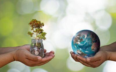 Relatório de Responsabilidade Social Corporativa e Meio Ambiente 2019