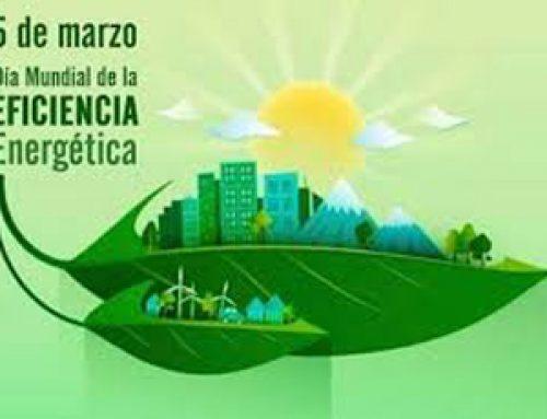 5 de Março, Dia Mundial da Eficiência Energética.